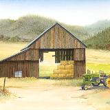 High Meadow Hay